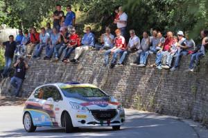 Michele Tassone, Daniele Michi (Peugeot 208 VTI R2 #18)