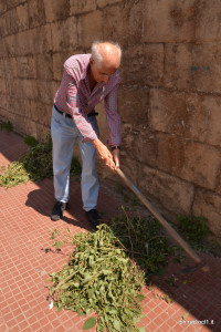 L'avv. Gucciardo al lavoro (4)
